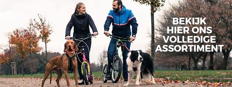Steppen met de hond via Hondensteps met tekst